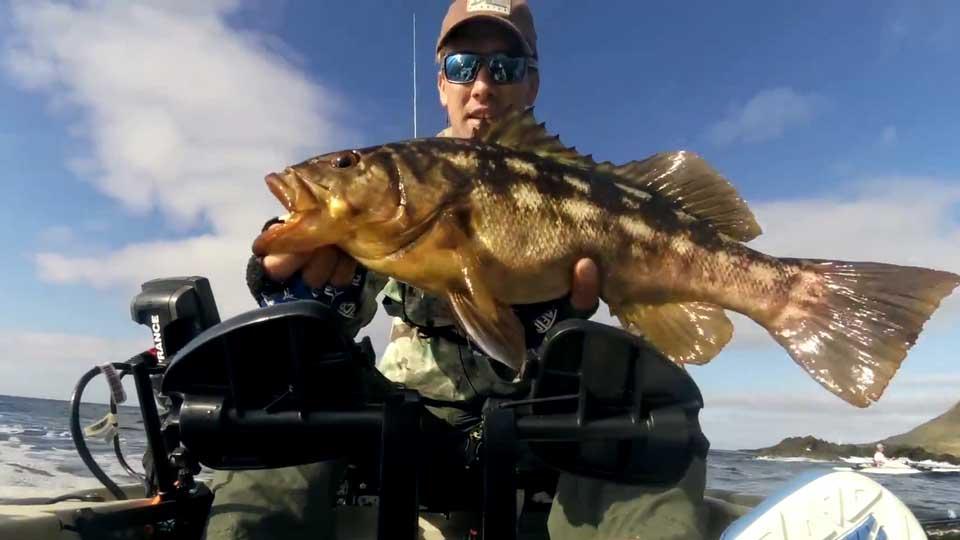 Coarse & Match Fishing - watch coarse & match fishing videos
